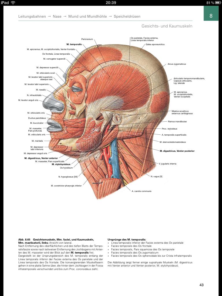 Die Sobotta iPad App ist eine der besten Apps um die Anatomie zu ...